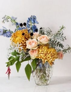 An Assortment of Vibrant Blooms