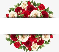 Beautiful roses a Flower Backgrounds, Wallpaper Backgrounds, Iphone Wallpaper, Art Background, Vector Background, Borders And Frames, Rose Art, Floral Border, Flower Frame