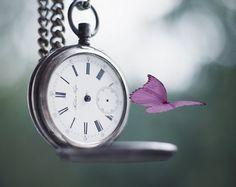 Não tem acordo com o tempo, ele não para, ele não volta, ele apenas segue. O tempo pode ser um grande aliado ou um grande inimigo.  Rosi Coelho