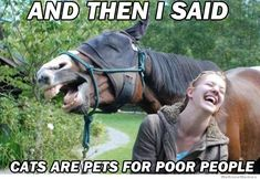 And then I said...Cats are pets for poor people!