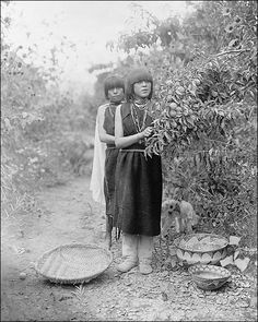 black and white photo from 1905. Native American Tewa Girls Fruit Gatherers Edward S. Curtis