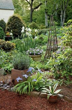 potted plants to fill in when perennials are cut down. #BackyardGardening
