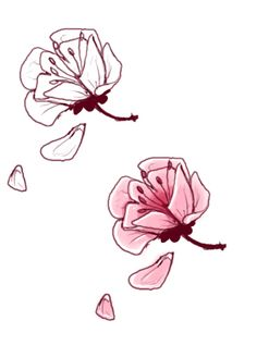 cherry blossom by Anarch-inks.deviantart.com on @deviantART