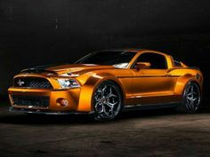 Mustang supersnake