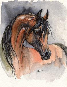 Bay arabian horse original pen and watercolor by AngelHorses