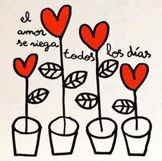 """Nunca debemos olvidarnos de """"regar el amor"""" cada día..."""