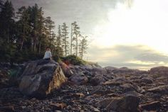 The Great Bear Rainforest Hiking Places, My Dream, Vancouver, Places To Go, Bear, Explore, Outdoor, Outdoors, Exploring