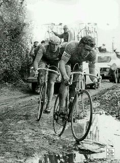 Maertens and De Vlaeminck