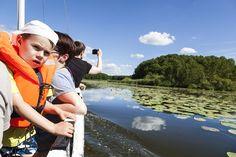 Abenteuer auf der Mecklenburgischen Seenplatte erleben. Alle Infos zum Familotel Borchard's Rookhus gibt es hier: http://kinderhotel.info/kinderhotel/familotel-borchard-s-rookhus