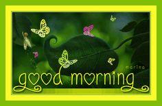 Decent Image Scraps: Good Morning