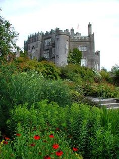 Birr Castle in Ireland - when we were there in 2003, this was one of our favorite stops - an accidental find, we spent much of the afternoon here, wandering the grounds and picknicking - and the kids tried to adopt first a swan and then a puppy.  What a beautiful place!