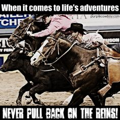 Get all the latest from Purple Cowboy Wines, straight from the horse's mouth… Rodeo Quotes, Cowboy Quotes, Cowgirl Quote, Equestrian Quotes, Cowgirl And Horse, Horse Love, Horse Riding, Barrel Racing Quotes, Barrel Racing Horses