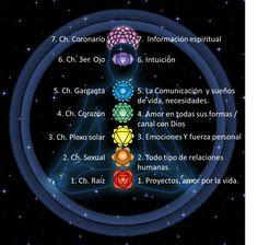 CARME GARGULLO: REIKI, HOPONOPONO, MEDITACIÓN Y MÁS....: LOS CHAKRAS En el cuerpo hay siete centros de ...