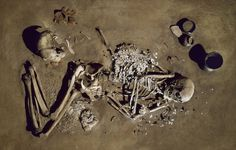 A female from the Corded Ware culture was buried with hundreds of beads. DNA from this fossil was used to reconstruct the ancient mitochondrial heritage of Europe.