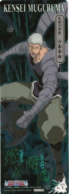 Kensei Mugurama (Vizard)