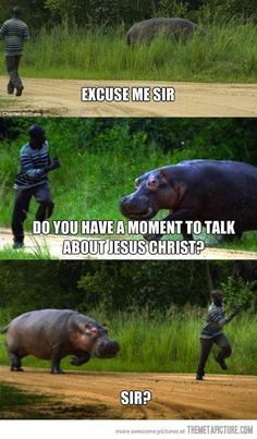 I would run too. Because it's a freaking HIPPO and they KILL PEOPLE! By using Jesus as a ruse, apparently.