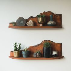 mid century live edge shelves