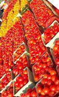 Manassas Farmer's Market, Manassas, VA