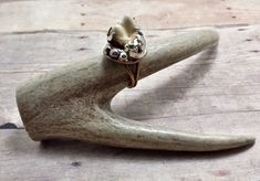 Real Dog Tooth Ring. Size 6.5 oddities bone jewelry by Clever Kim's Curios