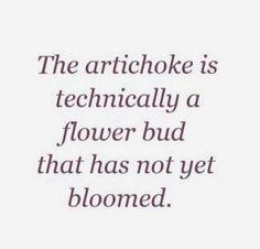 Artichoke Hearts, My Happy Place, Artichokes, Words, Farm Cottage, Stems, Vegetable Garden, Colors, Trunks