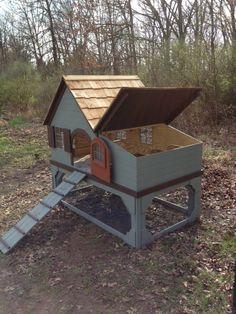 Chicken coop on Etsy....time to build a coop.