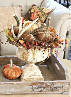 maybe add in seashells common ground : A Mantel, a Living Room, and Whatever's Left for Thanksgiving. Velvet Pumpkins, Fall Pumpkins, Casa Magnolia, Thanksgiving Decorations, Fall Decorations, Thanksgiving Crafts For Toddlers, Thanksgiving Diy, Fall Arrangements, Autumn Decorating