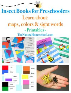 The activities we did with insect books for preschoolers target several subjects, not just insects. Come take a look and grab the free printables!