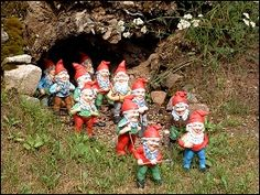 Zwergenpark in Trusetal Garden Gnomes, Woodland Creatures, Fairy Land, Miniture Things, Pixies, Toad, Pathways, Faeries, Elves