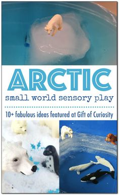 Building an Arctic small world sensory habitat helps children to assimilate information they learn. Get inspiration for your Arctic small world sensory habitat! Arctic Habitat, Artic Animals, Eyfs Activities, Family Activities, Winter Activities For Kids, Small World Play, Play Based Learning, Sensory Play, Sensory Table