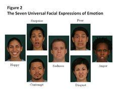 facial expression analysis