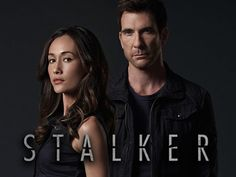 Stalker on CBS- hoping it is renewed for a second season. Not looking good, but I love it!