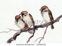 Watercolor Original Painting Of Sparrows On A Branch. Asian Style. Сток-фотография: 131822300 : Shutterstock