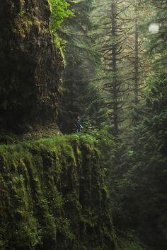 Eagle Creek Trail to Wahtum Lake.. Eagle Creek Trail, Oregon