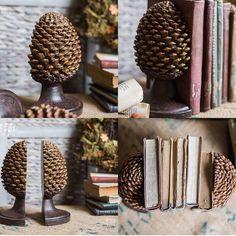 Wow Pinecone book stand #bookshelf  #pinecones #creative