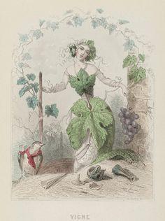Les Fleurs Animées', 1847.
