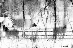 corralled horses in snow rustic by BlackFedoraArtnStuff on Etsy, $30.00