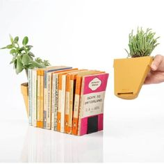 Kaspó Könyvtámasz Small Indoor Plants, Potted Plants, Nifty, Book Worms, Bookends, Recycling, Uk Plant, Urban, Design