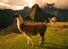 Machu Picchu <3  The Light of Ages by michaelanderson.deviantart.com on @deviantART
