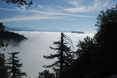 Mt. Wilson Trail  plus marmalade, high tea, and Bean town in Sierra Madre  http://www.sunset.com/travel/california/worlds-away-north-la-00400000014697/