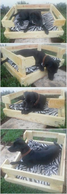 You can make this dog bed entirely from recycled shipping pallet woods. As you can see we have made it quite big from the dog so that the dog can easily rest on it. You can also put small foam piece to make the bed cozier for him.