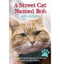 The moving, uplifiting true story of an unlikely friendship between a man on the streets and the ginger cat who adopts him and helps him heal his life.