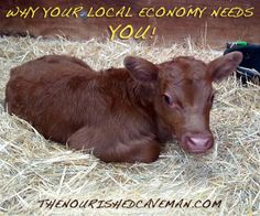 Local economy and sustainability are closely connected, find out why!