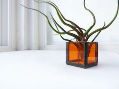 Air plant holder  single stained glass box  Orange by glassetc, $11.99
