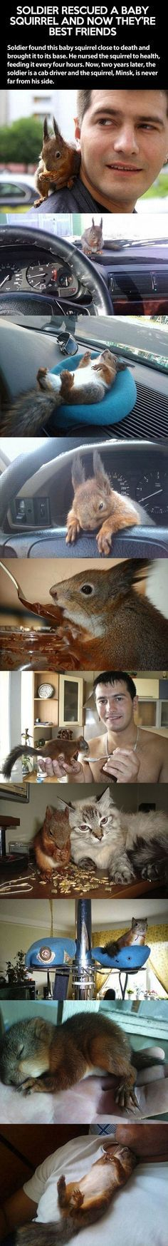 I have to show Keira this, she wants a squirrel so bad