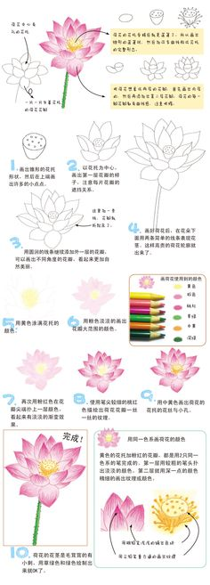 Lotus said the faithful, pure, innocent, honest quality, low-key in showing the elegance, the lotus is a flower in the moral character of flowers. http://www.duitang.com/people/mblog/28478720/detail/?spm=2014.12553688.200.0