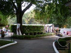 entering the mediterrian garden