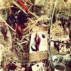 #corno #terracotta #scaramanzia #fattoamano #artchiajaoriginalhandmade