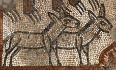 Rare Noah's Ark Mosaic Uncovered in Ancient Synagogue in Israel. Mosaics depicting prominent Bible scenes were uncovered during annual excavations of an ancient synagogue in Israel's Lower Galilee.  During the excavation in June, archaeologists found two new panels of a mosaic floor in a Late Roman (fifth-century) synagogue at Huqoq, an ancient Jewish village.