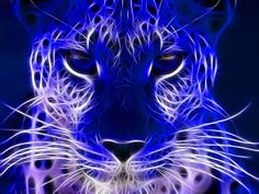 3d and abstract animals   blue electric cheetah - 3D and CG & Abstract Background Wallpapers on ...