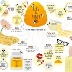 My first information graphic. Hopefully one of many to come. This particular infographic shows some of the health benefits of honey and other beehive